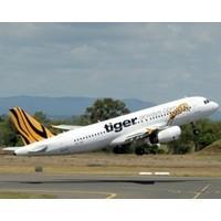 Tiger Airways' bid to change its stripes
