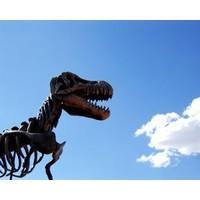 Leading the dinosaur? Newspaper man John Allan to head up Sensis