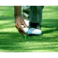 Adam Scott's choke: Is golf the perfect way to learn EQ?