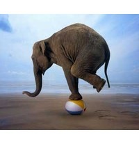 Finding the right balance in workplace reform