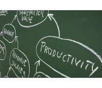 Changing practices alone will not boost productivity