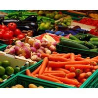In the 'O-zone': Deciphering our new dietary guidelines