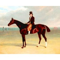 Rich Tales: Rich Listers and the life equestrian