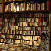 Pugs, cosplayers and charity: Aussie bookshops gear up for National Bookshop Day