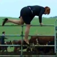 Devondale farm ad avoids watchdog second time around