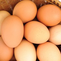 Uncertainty cracks free-range egg market