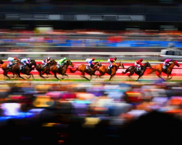 Do historical trends in Melbourne Cup champions point to a winner?
