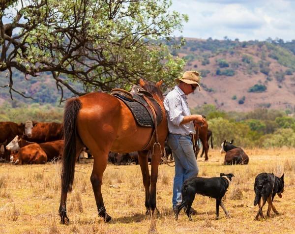 Rich List Kidman family list Australia's largest private rural landholding