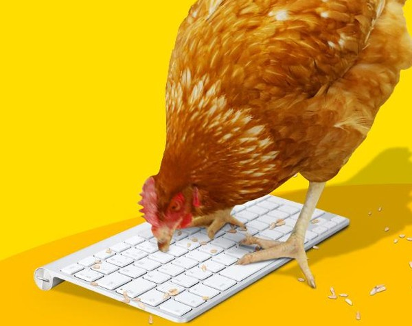 Chicken Treat aims for world first with fowl-mouthed Twitter account: Will pecks appeal sell?