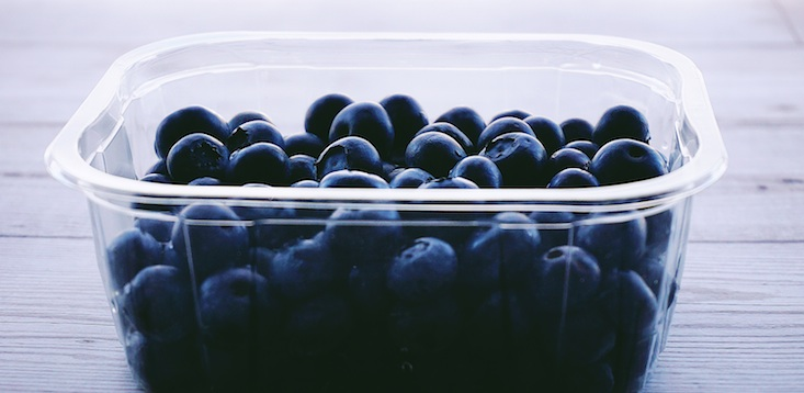blueberries food containter
