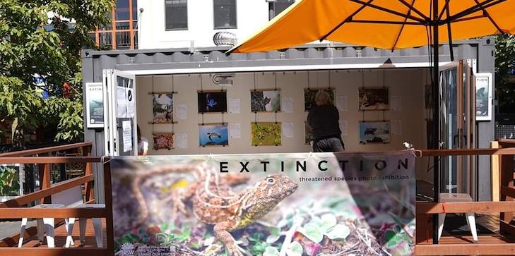 Renew-Wollongong-exhibition