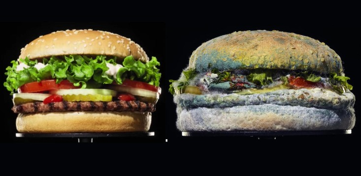 Burger King mouldy whopper