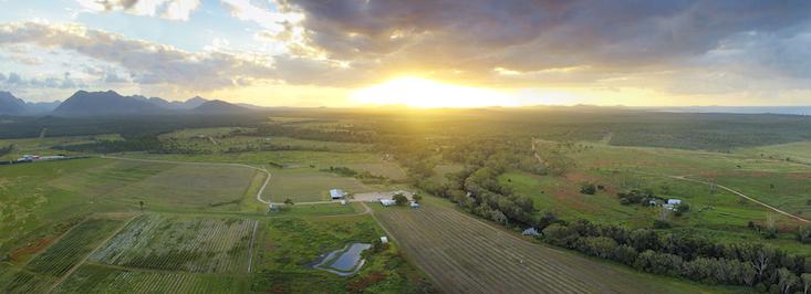 Eden Lassie farm